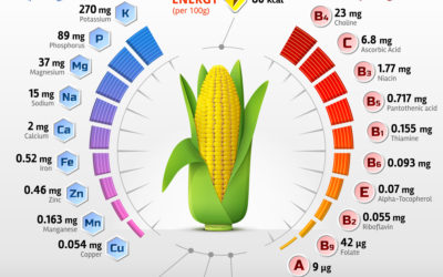 El bioenriquecemiento de cultivos