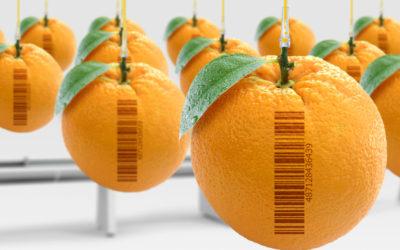 NIR – una nueva técnica para determinar la composición de alimentos.