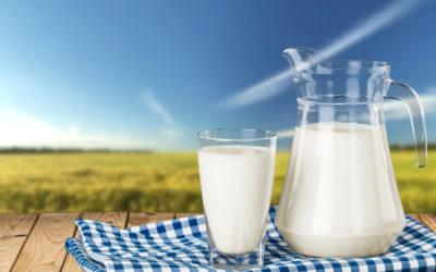 Una bacteria que mejora las características nutricionales de muchos alimentos.