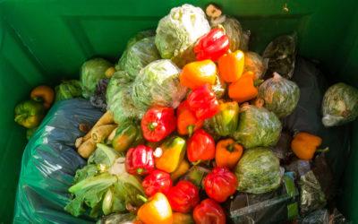 Según la FAO un tercio de los alimentos se estropea antes de ser consumido.